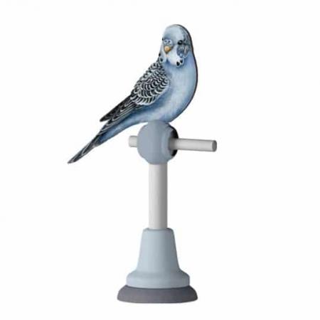 parrot367